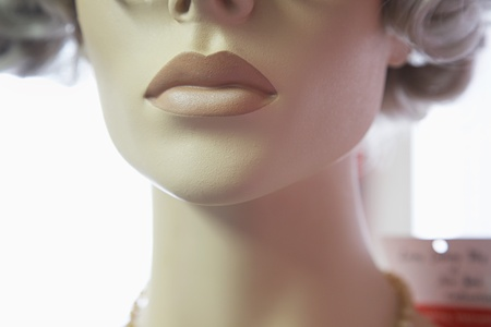 manequin: Mouth and Chin of Mannequin