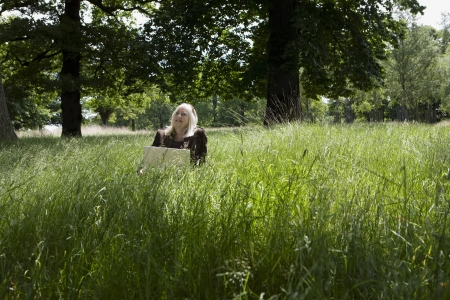 Woman Using a Laptop in a Meadow Stock Photo - 20716294