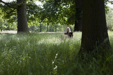 50 to 55 year olds: Woman Using a Laptop in a Meadow LANG_EVOIMAGES