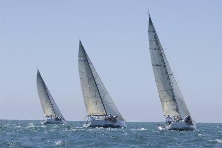 bateau voile: Trois yachts concurrence dans l'�quipe voile �v�nement Californie LANG_EVOIMAGES