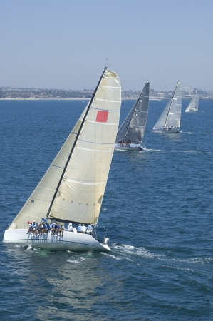 angled view: Four yachts compete in team sailing event California