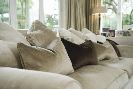 styled interior: Cushions on sofa in living room