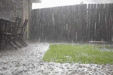 裏庭で大雨