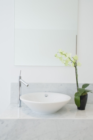 showcase interiors: Sink and potted plant in bathroom