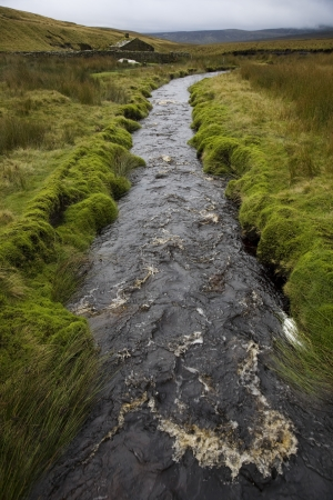 Brook in Yorkshire Dales Yorkshire England Stock Photo - 20717505