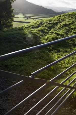 yorkshire dales: Puerta del metal en el campo de Yorkshire Dales Yorkshire Inglaterra
