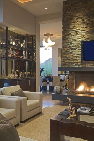 luxury living room: Showcase interior
