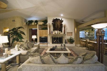 palm springs: palm Springs living room with wall-mounted animal pelt LANG_EVOIMAGES