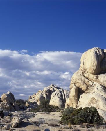 �rock formation�: Joshua Tree National Park California.  Monzogranite rock formation