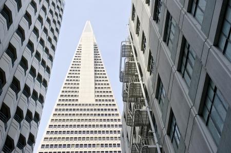 transamerica: Low angle view of the Transamerica Pyramid San Francisco designed by William Pereira
