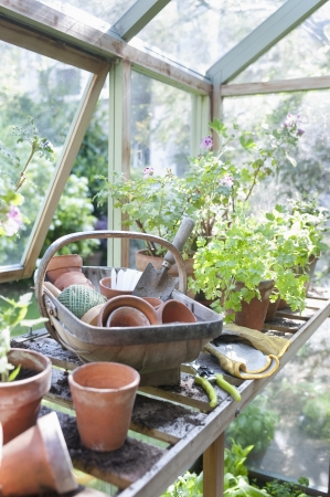 Gardening equipment on workbench in potting shed Stock Photo - 20741187