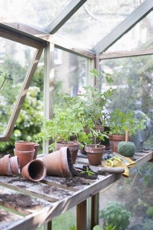overturned: Overturned pots on workbench in potting shed