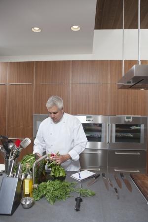 wood panelled: Mid- adult chef washing leaf vegetables