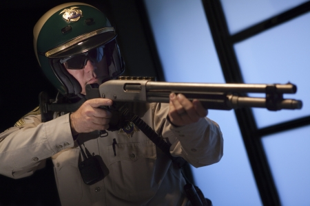 patrolman: Nightwatch patrolman with rifle