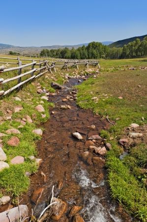 A tranquil  green country scene with a small running stream Stock Photo - 20741895