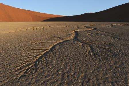 namib: Dead Vlei  Namib Desert  Namibia