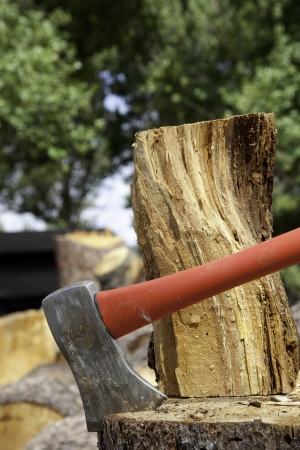 stu: Close-up of axe wedged into tree stump