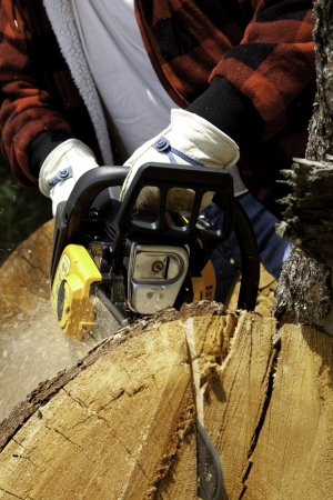 occ: Close-up view of lumberjack with electric saw LANG_EVOIMAGES