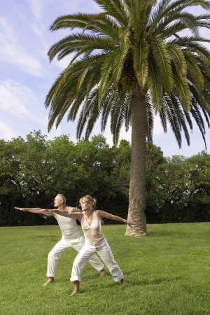 tai chi: Middle-aged couple doing tai chi in park LANG_EVOIMAGES