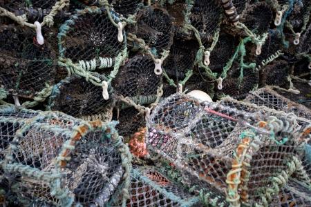 crab pots: Close-up view of lobster crab fishing pots