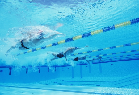 lane marker: Underwater shot of four male athletes competing in swimming pool
