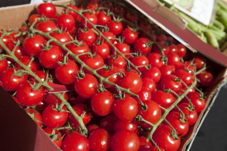 commercialism: Fresh tomatoes on display at store