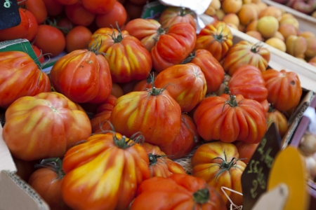 commercialism: Close-up of tomatoes on display in store LANG_EVOIMAGES