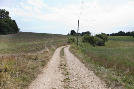 unpaved road: Unpaved road in grassy field against cloudy sky