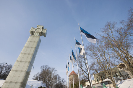 flagpoles: Low angle view of Freedom Monument and flagpoles; Tallinn; Estonia; Europe LANG_EVOIMAGES