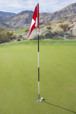 golf of california: Golf ball and flag at course