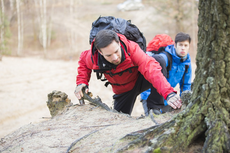 ecotourism: Young backpackers hiking in forest