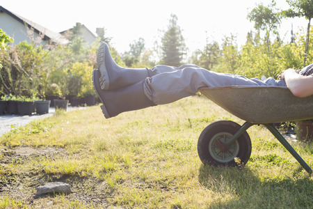 low section: Low section of man relaxing in wheelbarrow at garden