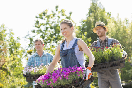 crecimiento planta: Jardineros sonriente llevando cajas con macetas de flores en el vivero de plantas LANG_EVOIMAGES