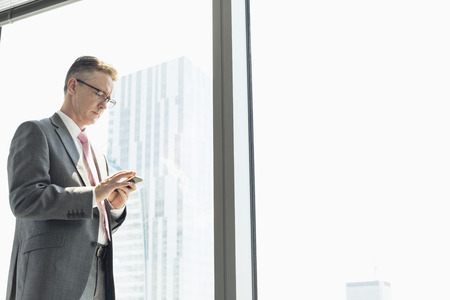 one  people: Mature businessman using cell phone by window