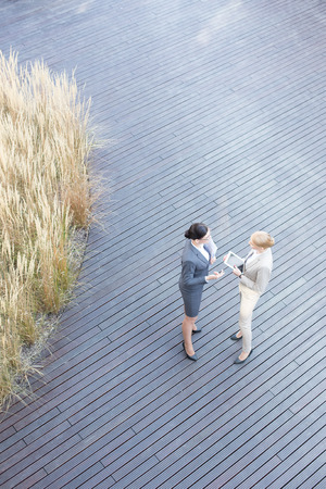 floorboard: High angle view of businesswomen discussing on floorboard
