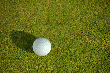 Elevated view of golf ball on grass LANG_EVOIMAGES