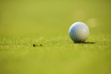 recreational pursuits: Golf ball on grass
