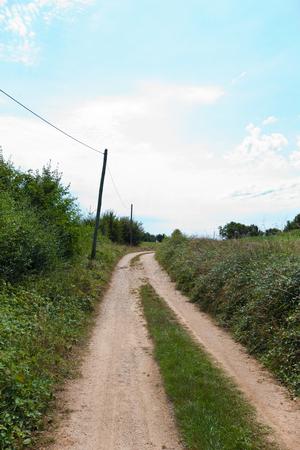 Unpaved road amidst plants LANG_EVOIMAGES