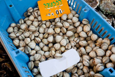 commercialism: Close-up of shellfish in container at store LANG_EVOIMAGES
