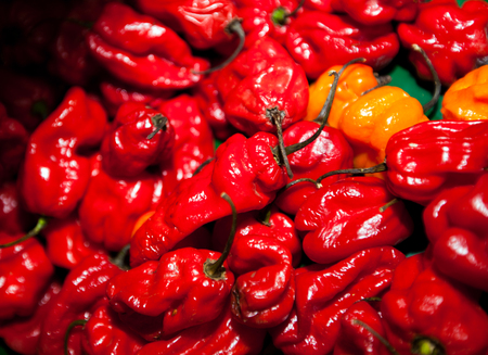 Close-up of red chillies in grocery store Stock Photo