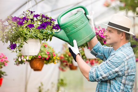Side view of middle-aged man watering flower plants in greenhouse Stock Photo