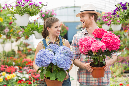 Happy gardeners looking at each other while holding flower pots at greenhouse Stock Photo