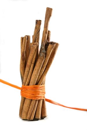 christmas scent: Tied Bunch of cinnamon Sticks