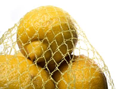 Lemons on white background - studio shot