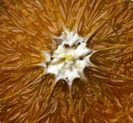 Orange slice  - close- up