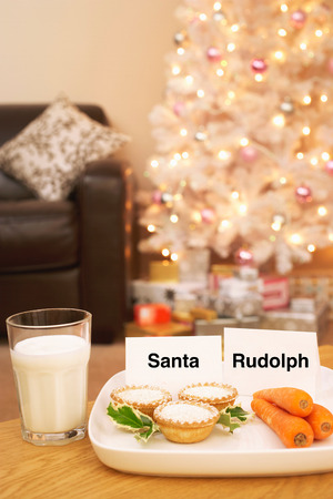Food for Santa and Rudolph