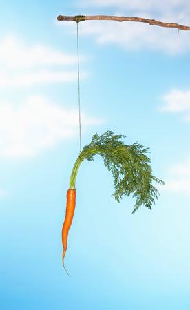 dangling: Dangling Carrot From Stick