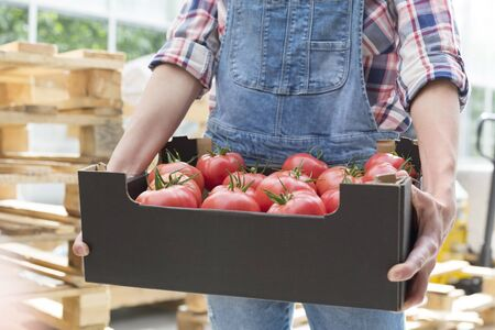 Midsection of farmer with tomatoes in crate against forklift 写真素材