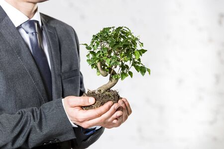 Midsection of businessman holding plant against white wall at office 写真素材