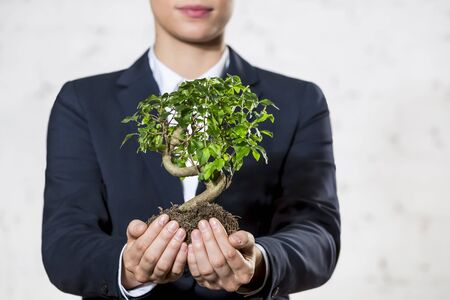 Midsection of young businesswoman holding plant against wall at office